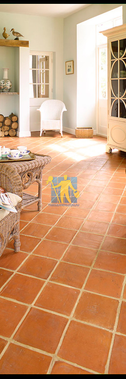 Terracotta Tiles Restoration Melbourne Tile Restoration